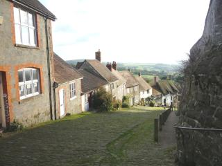 Easter Cottage PERFECT FOR A LOVELY CHRISTMAS, Shaftesbury