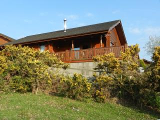 Twelve Glenmalure Pines, Rathdrum