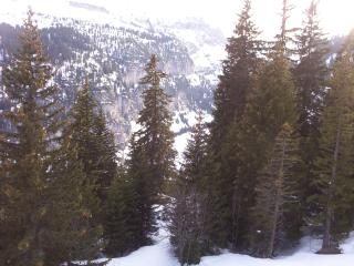 Grand Massif 805, Flaine