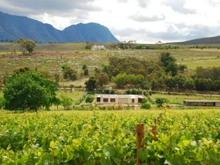 Earth Cottage, Hermanus