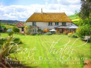Deane Thatch Self Catering Holiday Cottage, Shaldon