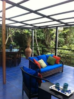 Covered deck has lost of seating to enjoy the view and monkeys that come by daily!