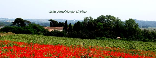 Saint Ferréol Estate & Vines