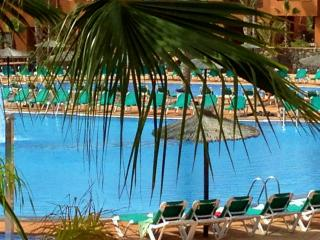 ■■■■■  BEST CHOICE  ─  FRONT POOL APARTMENT ■■■■■, Corralejo