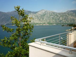 Frontine Apartment overlooking Kotor Bay