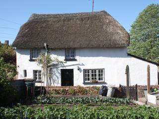 Thatched Cottage in Woodbury near Topsham, Exeter