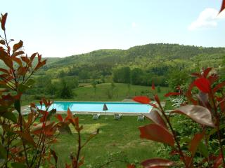 Romantic villa Chianti, Wi-Fi, cooking classes, weddings, Bucine