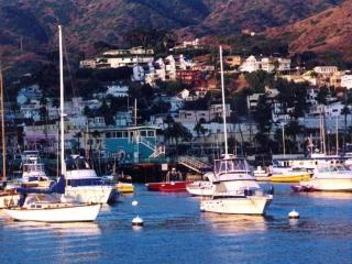 A Catalina Island Vacation Rental, Avalon