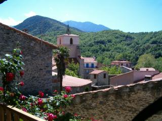 La Vieille Rose - Finestret, Prades