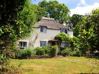 79825 - Halsway Hill Cottage, Holford