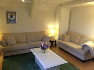 3-Bedroom Apartment, next to Amsterdam, Schiphol, Haarlem