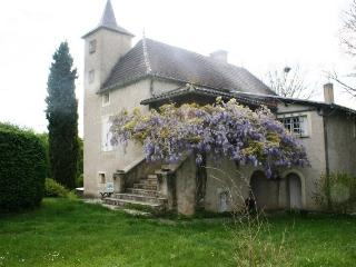Bouscarrat Charming stone house near the Lot river, Cahors