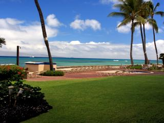 101-Extrawide Corner 1st Floor & Direct Oceanfront, Lahaina