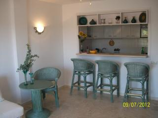 Residence with fantastic garden and swimming pool, Marbella