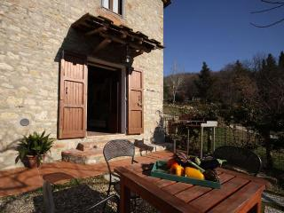 10313 - Farmhouse Naldoni - Ap, Pontassieve