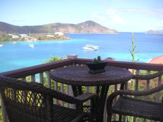 Chateau Relaxo perfect vacation spot with amazing ocean views, wrap around veranda,privacy and superbly renovated., Charlotte Amalie