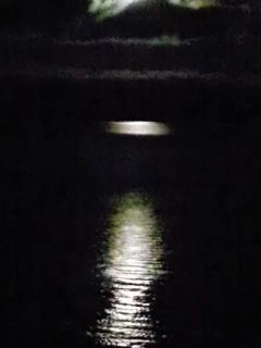 Fall in love with the moonlight on the water.....