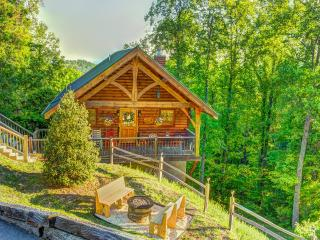 Romantic cabin,100 mile view! Privacy, AMENITIES!, Sevier County