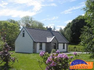Cosy traditional style Cottage in Kenmare town