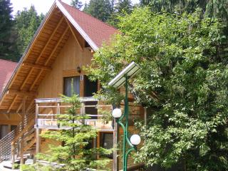 TraveLand Poiana Brasov - Two-Bedroom Apartment (4