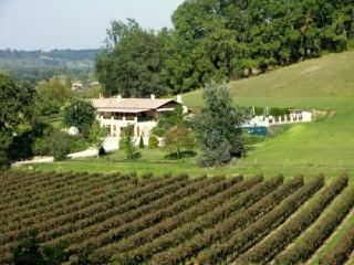 Beautiful Peaceful Villa Francesa With Large Pool, Flaujagues