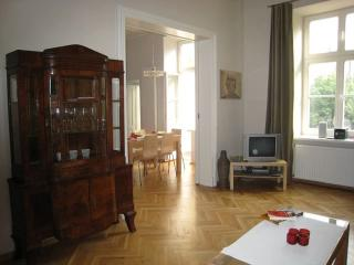 Super-large Old Town apartment, Cracovie