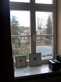 A view of the gardens from the living room