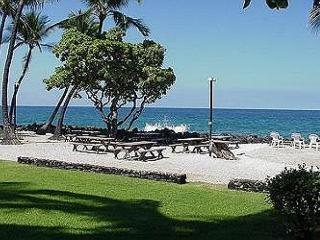 Kona Isle A4 Beautifully upgraded condo. $69.00 special all of May-June!, Kailua-Kona