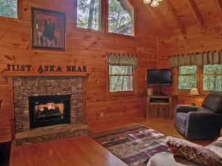 Just Aska Bear - Aska Adventure Area, Morganton