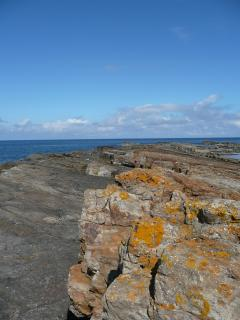 Rocky Outcrop at Beadnell