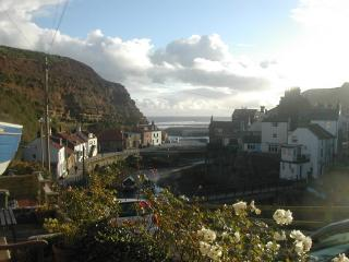 Traditional Fisherman's Cottage + stunning view N4, Staithes
