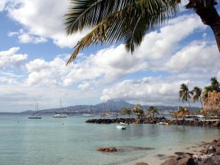 MARTINIQUE:Nice apartment 50 meters from the beach, Trois-Ilets