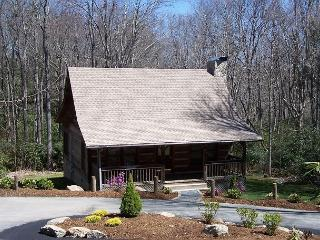 Mountain Brook Log Cabin a perfect cabin in the woods, close to the Parkway, Blowing Rock