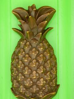 welcome to the pineapple house