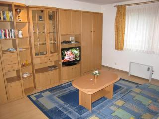 Cosy Studio/free parking place - Zell am See
