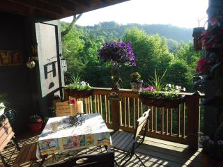 Condo in the trees in the Blue Ridge Mountains, Boone