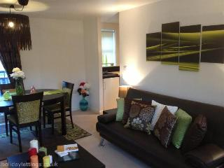 CITYPAD 2 bed/ 2 bath for 6ppl, Banbury