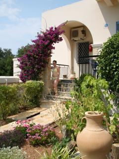 Surrounded by mediterranean plants and olive trees