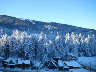 Luxury Apartment on 5* Complex, Borovets