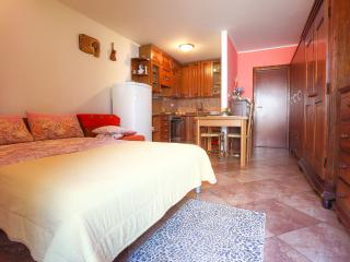 NB3 Air conditioned studio with garden view, Umag