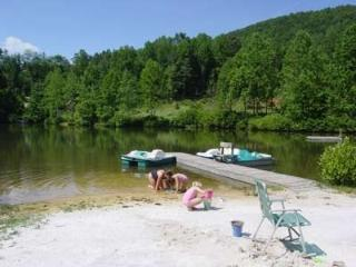 Log Cabin, Lake, Fishing, Paddle Boats, Swiming, Saluda