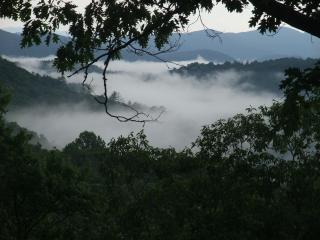 Ray's Roost: Secluded BigMtn View, yet 1.5mi 2 twn, Highlands