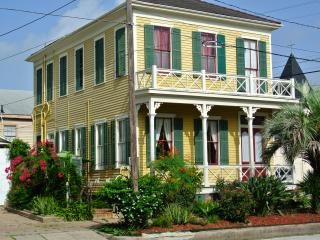 Historic Hummingbird House- (New listing Aug 2014), Galveston