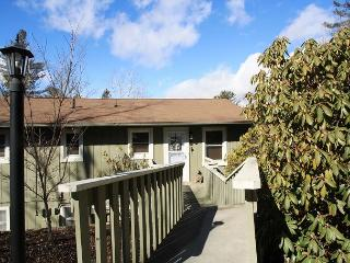 Village Green C5 a tastefully decorated 3 bedroom condo in town Blowing Rock.