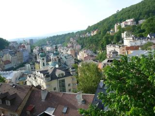 Karlovy Vary apartment with beautiful view for 9p