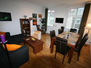 cosy and  spacious apartment in downtown reykjavik, Reykjavik