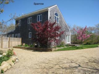 Immaculate Home with Above Ground Pool 116580, Edgartown
