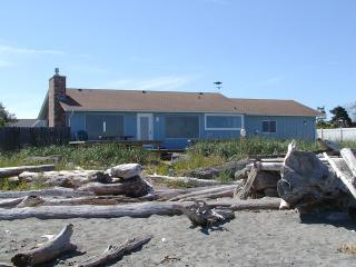 3 Crabs Beach House - Private Beach With Hot Tub, Sequim