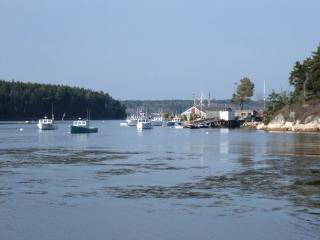 Minutes from Popham Beach-Cozy Maine Coast Cottage, Phippsburg
