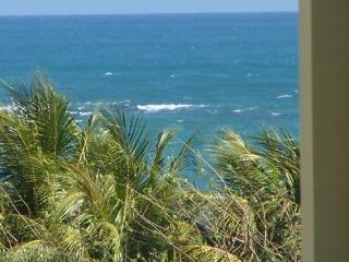 Beach Penthouse free night w/all fees included, Loiza